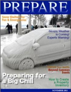 PREPARE Magazine November 2013