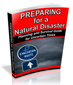 Preparing for a Natural Disaster