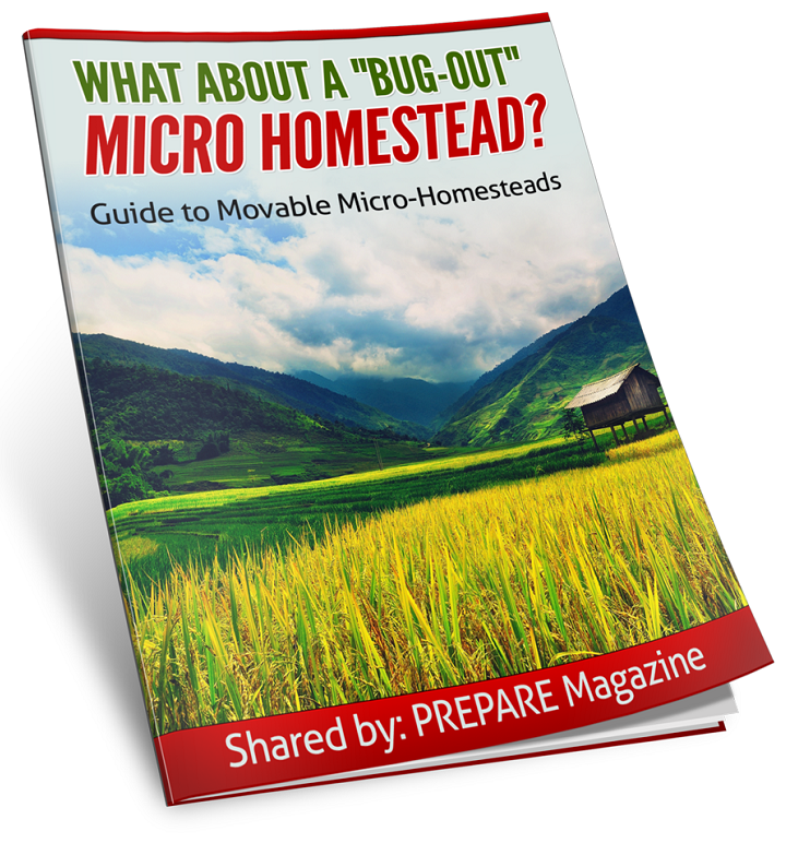 What About a Bug-Out Micro_Homestead?